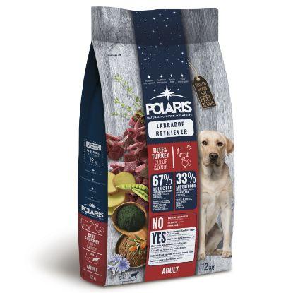 Obrázek Polaris Dog Adult Labrador hovězí & krůta 12 kg