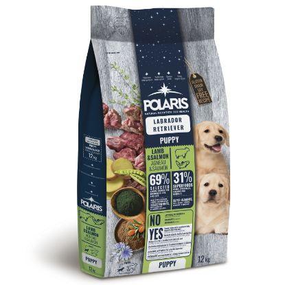 Obrázek Polaris Dog Puppy Labrador jehně & losos 12 kg