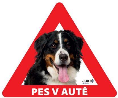Obrázek Samolepka pes v autě venkovní - bernský salašnický