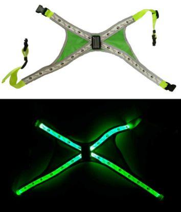 Obrázek Svítící LED postroje L zelená