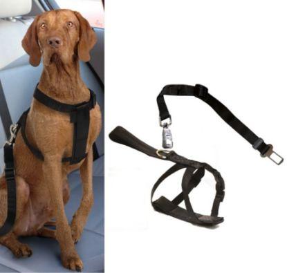 Obrázek Postroj pro psa do auta Croci M 50-70 cm