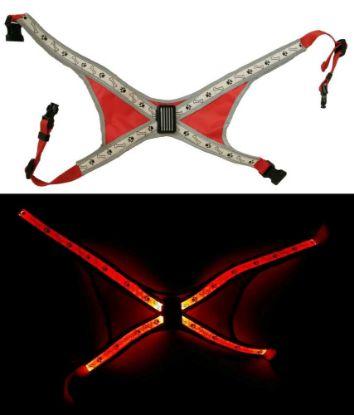 Obrázek Svítící LED postroje L červená