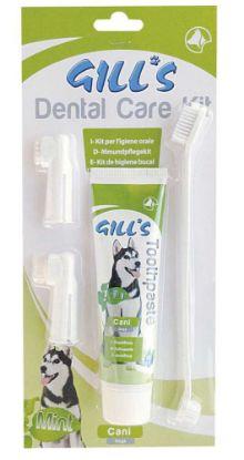 Obrázek Zubní sada (pasta+kartáčky) Gills