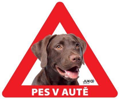 Obrázek Samolepka pes v autě vnitřní - labrador hnědý