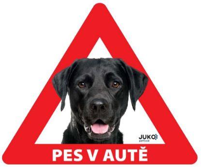 Obrázek Samolepka pes v autě vnitřní - labrador černý