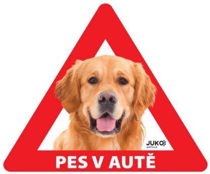 Obrázek Samolepka pes v autě vnitřní - retriever
