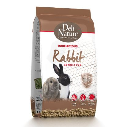 Obrázek Deli Nature Rodelicious Sensitive králík 2 kg