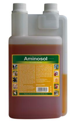 Obrázek Tekutý Aminosol 30 ml